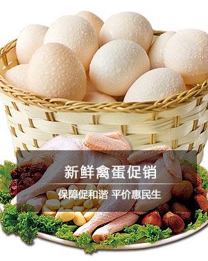 新鲜禽蛋促销