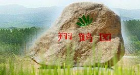 翔鹤园--江苏盐城